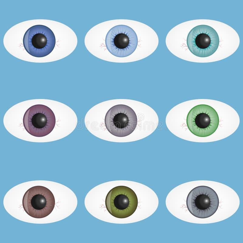 肉眼,一套与学生的现实肉眼 一个人的眼睛有血丝船的 皇族释放例证