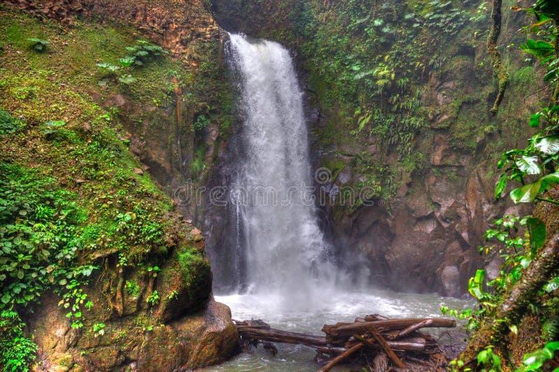 肋前缘拉巴斯rica瀑布 图库摄影
