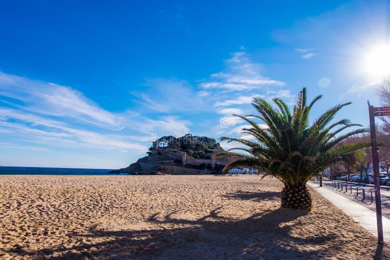 肋前缘的Brava,卡塔龙尼亚,西班牙托萨德马尔 免版税库存照片