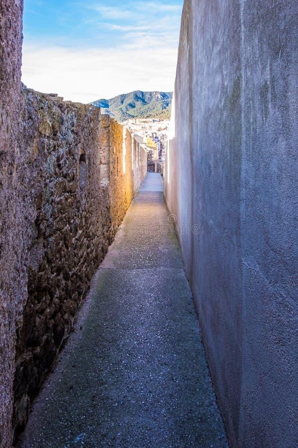 肋前缘的Brava,卡塔龙尼亚,西班牙托萨德马尔 免版税库存图片