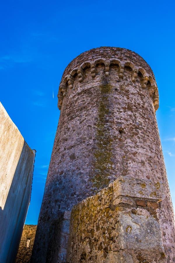 肋前缘的Brava,卡塔龙尼亚,西班牙托萨德马尔 免版税图库摄影