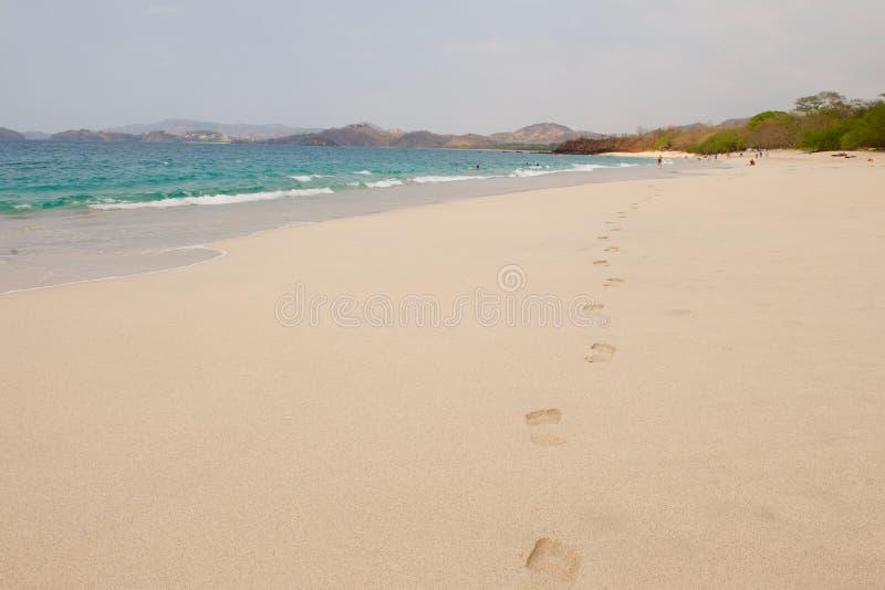 肋前缘脚印rica沙子 免版税库存图片