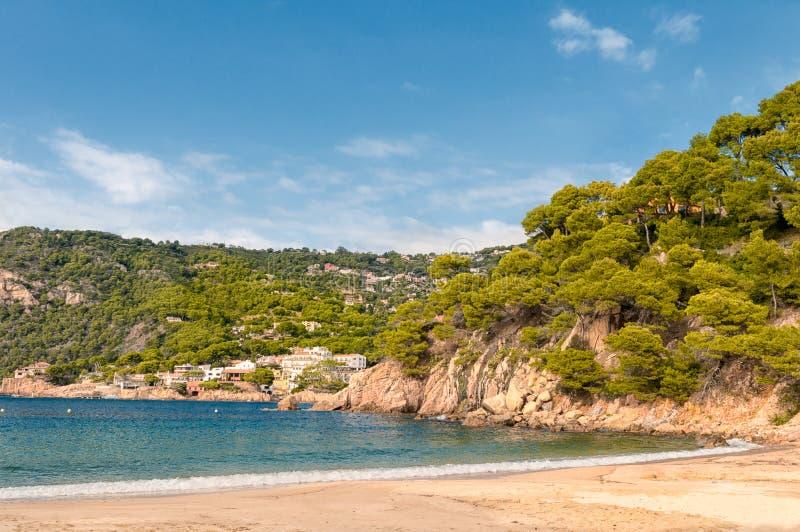 肋前缘Brava海滩, Begur,西班牙 免版税库存图片