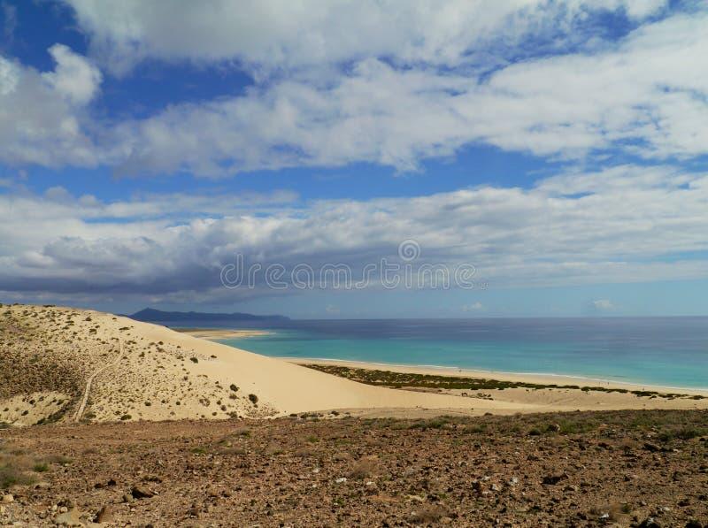 肋前缘Calma白色沙丘在费埃特文图拉岛的 免版税库存照片