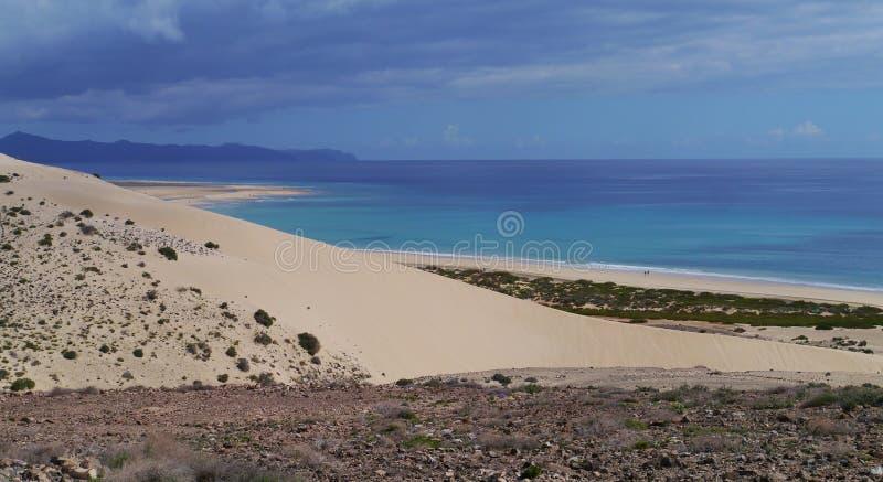 肋前缘Calma白色沙丘在费埃特文图拉岛的 免版税图库摄影