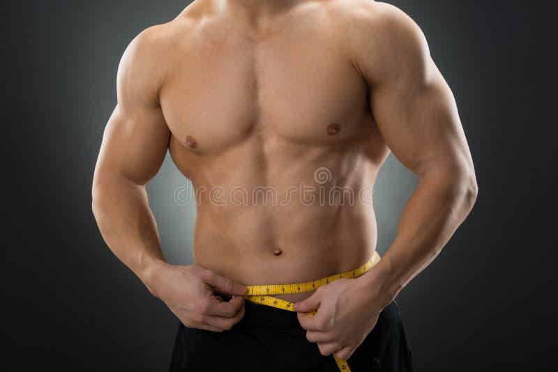 肌肉人测量的腰部的中央部位 图库摄影