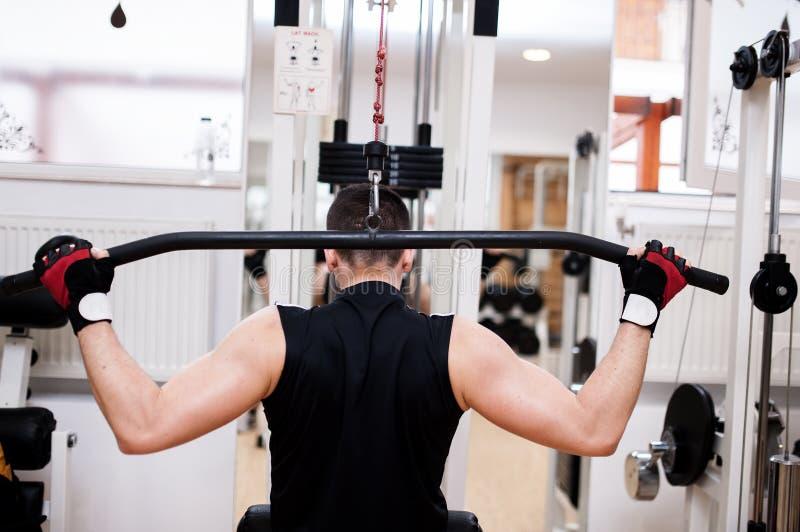 肌肉人行使在健身房的-爱好健美者 库存照片