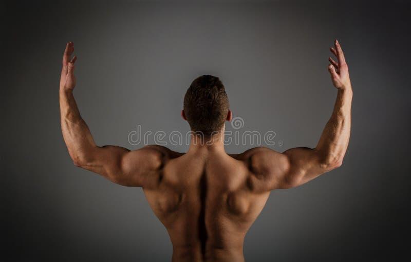 肌肉后面,男性赤裸,健康肌肉人,躯干人 干涉,坚强男人,爱好健美者,肌肉人 运动 库存照片