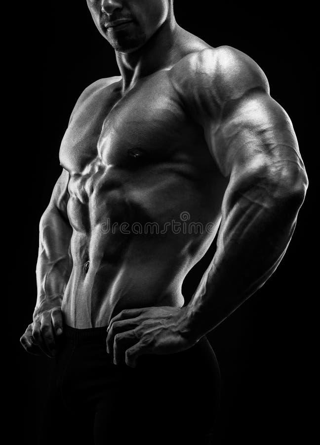 肌肉和适合的年轻爱好健美者健身男性式样摆在 免版税库存照片