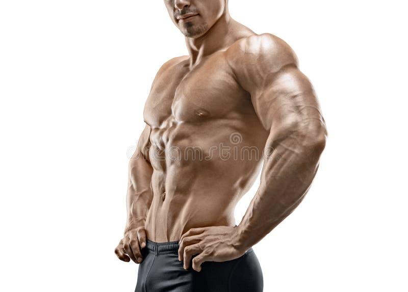 肌肉和适合的年轻爱好健美者健身男性式样摆在 库存照片