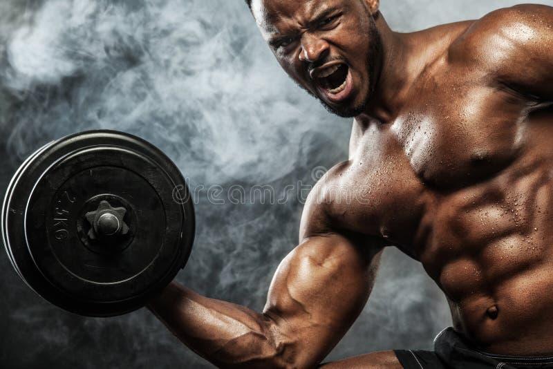 肌肉年轻健身炫耀与哑铃的人锻炼在健身健身房 图库摄影