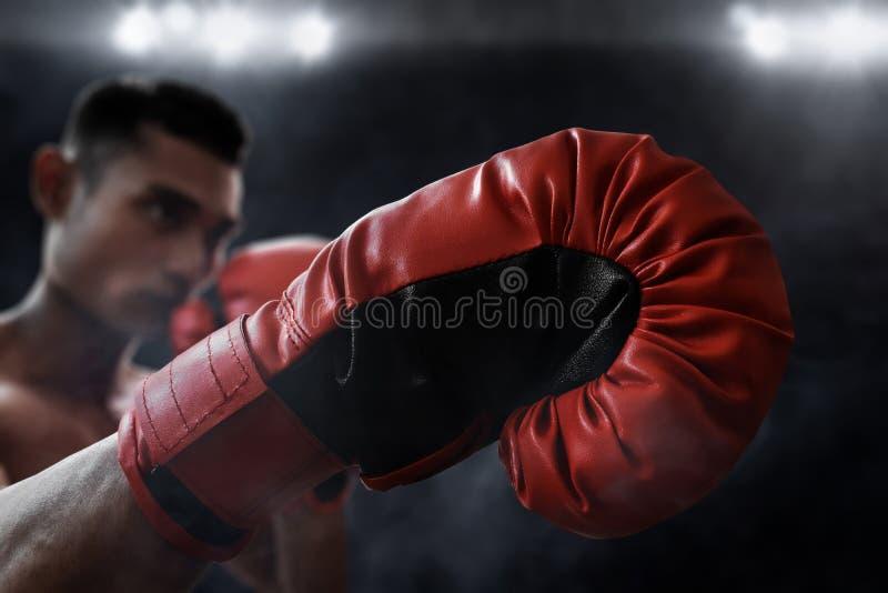 肌肉拳击手穿戴红色拳击手套 库存照片