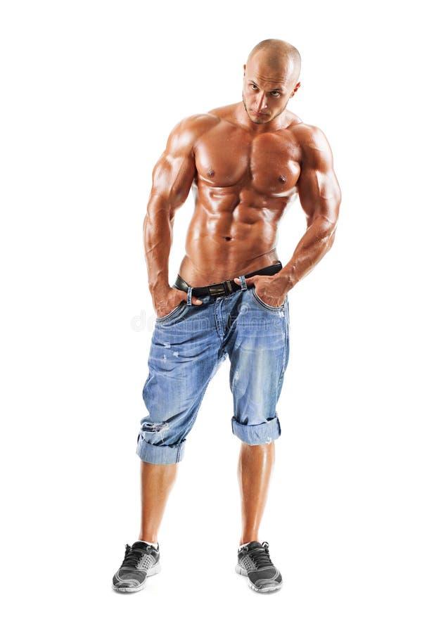 肌肉男性模型摆在 库存图片