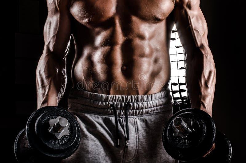 肌肉男性胸腔 免版税库存照片