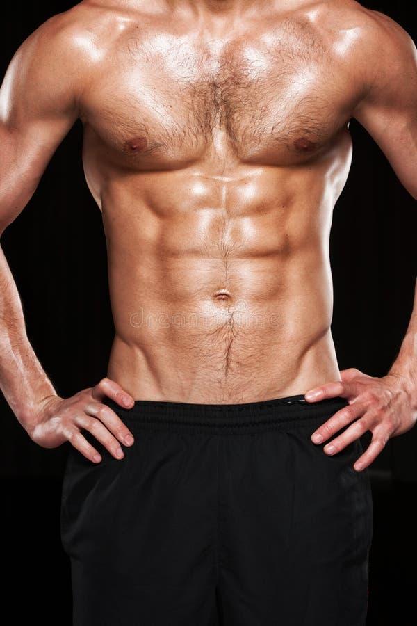 肌肉男性躯干。 免版税库存照片