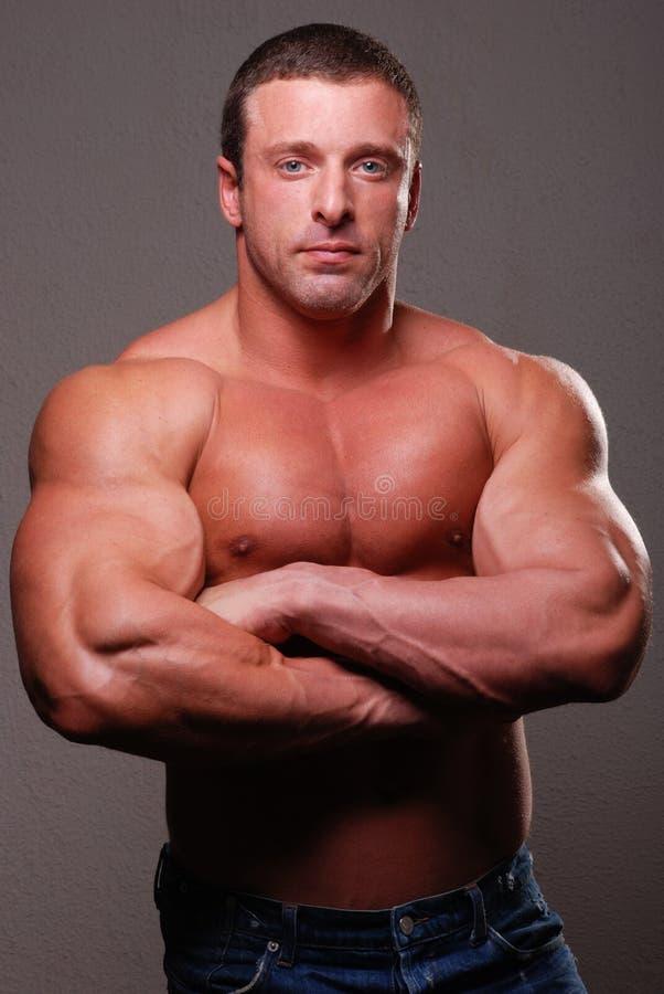 肌肉男设计 免版税库存图片