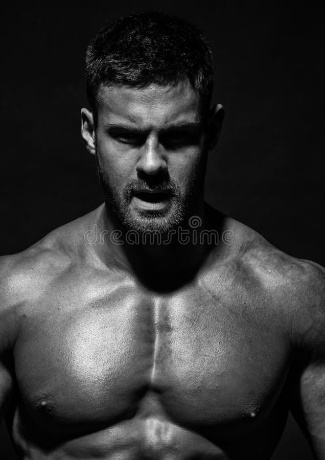 肌肉的男性式样康斯坦丁卡梅宁 免版税图库摄影