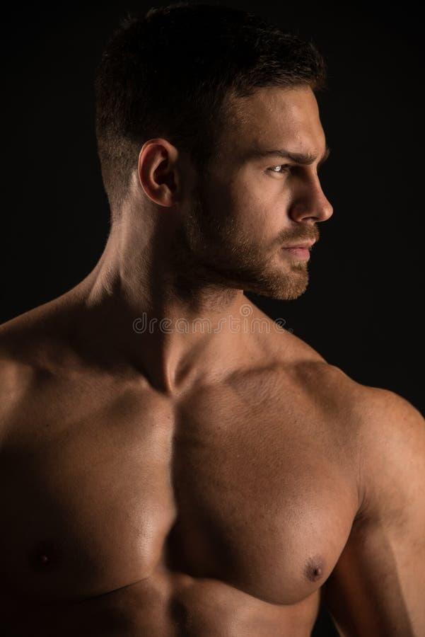 肌肉的男性式样康斯坦丁卡梅宁 免版税库存照片