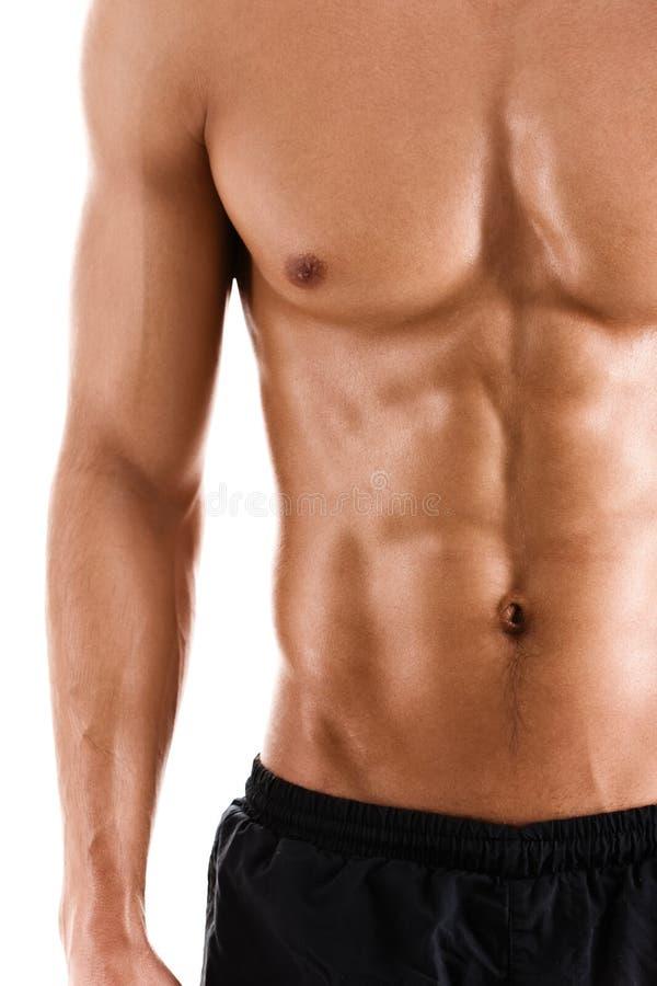 肌肉运动员的性感的身体 免版税库存图片