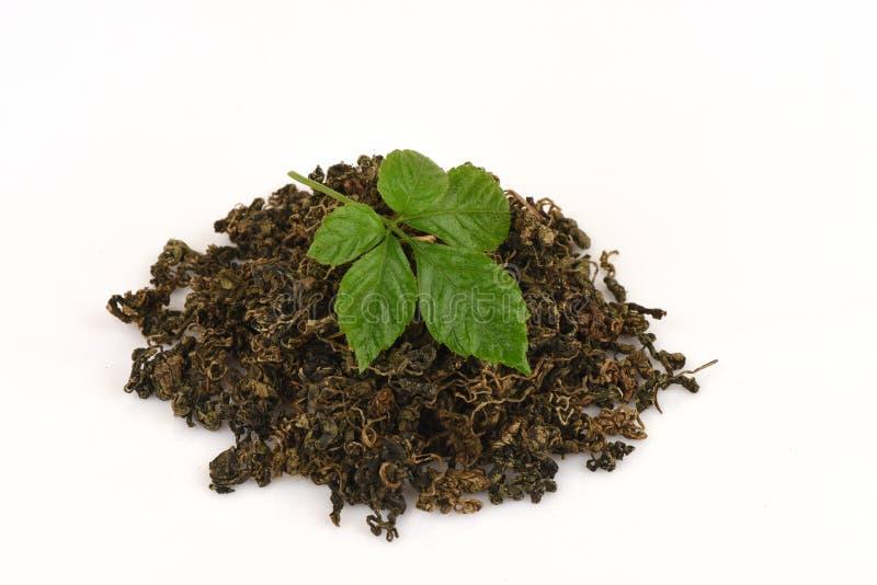 绞股兰中国名字Gynostemma pentaphyllum Thunb干燥的Makino和叶子 库存图片