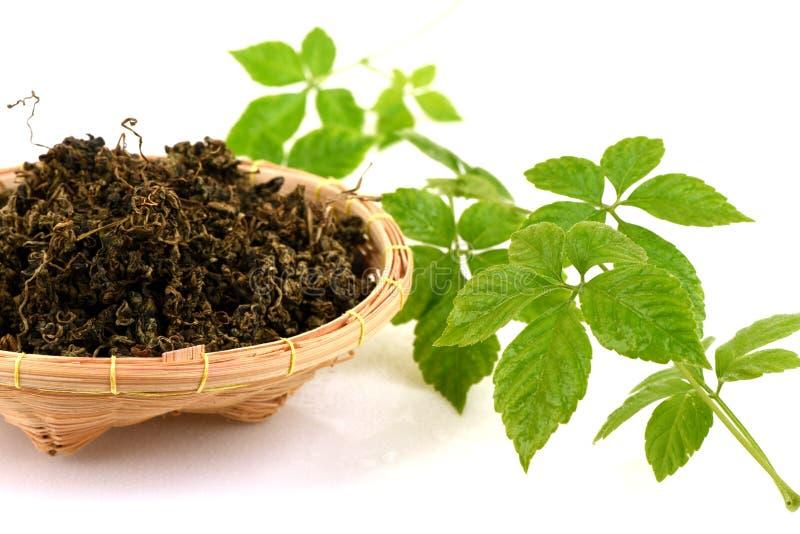 绞股兰中国名字Gynostemma pentaphyllum Thunb Makino,新鲜和干叶子 免版税图库摄影