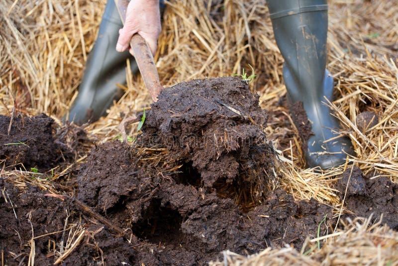 从肥料和秸杆的富有的有机腐土 图库摄影