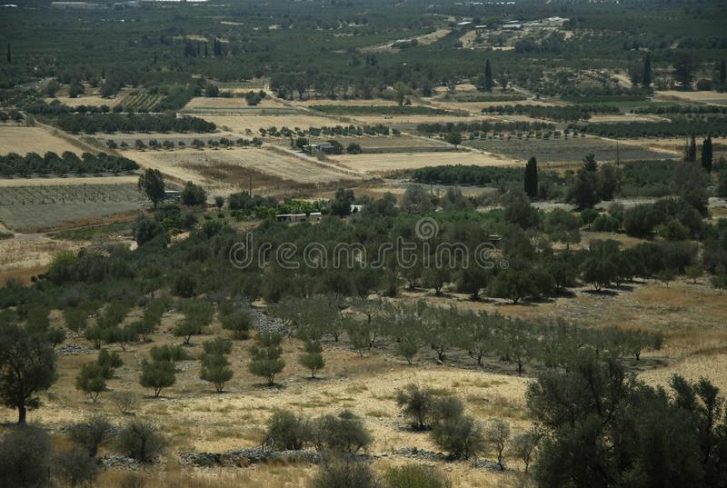 肥沃古老Messara平原在克利特 库存照片