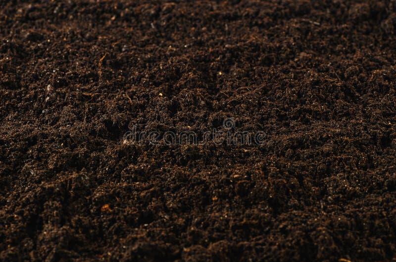 肥沃庭院土壤纹理背景顶视图 免版税库存照片