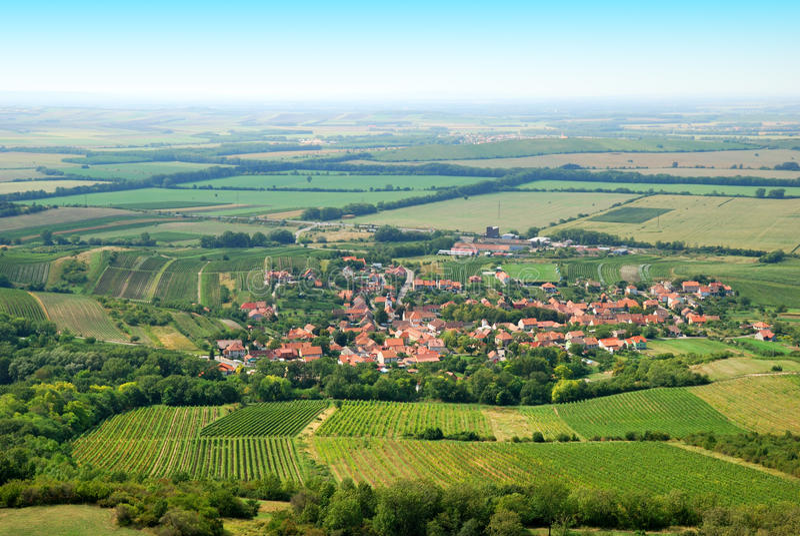 肥沃绿色葡萄园和小村庄在夏天 库存图片