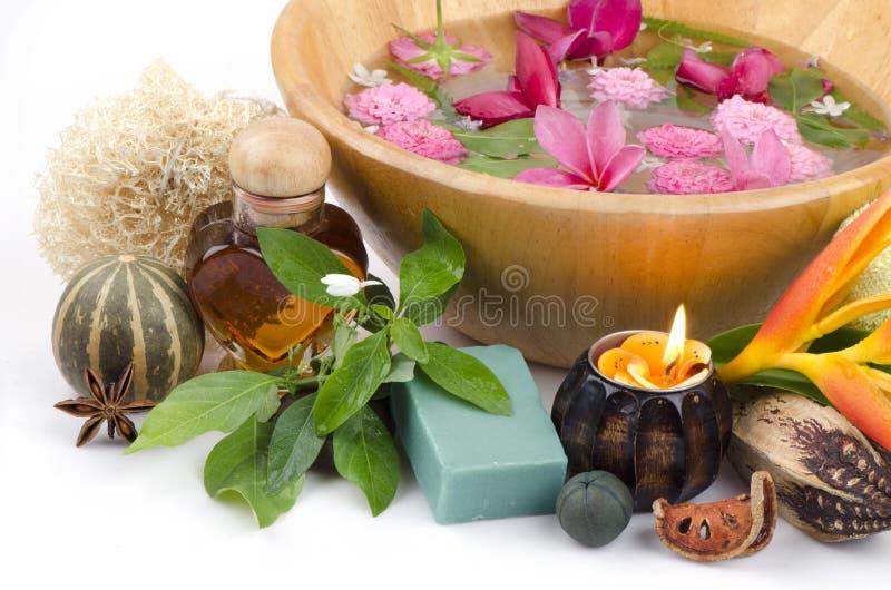 肥皂白色起重机花混合蜂蜜。 图库摄影
