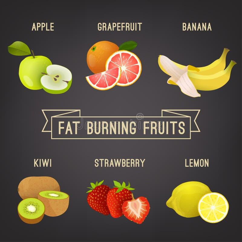肥胖灼烧的果子 库存例证