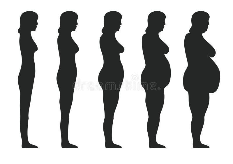 肥胖病 库存例证