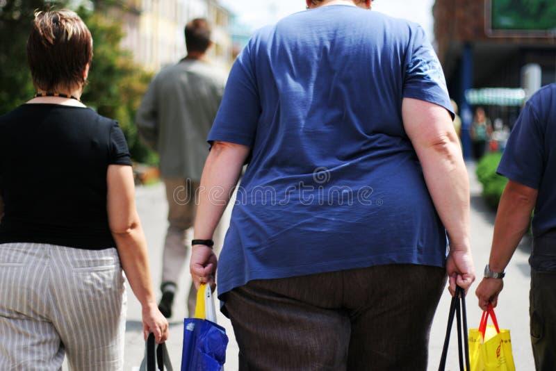 肥胖病 库存图片