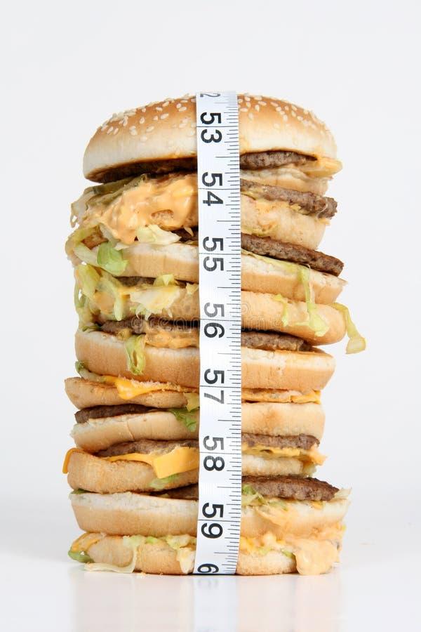 肥胖的汉堡 免版税库存图片