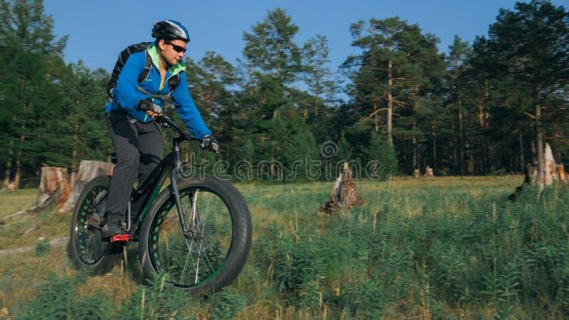 肥胖自行车在森林里也叫了在夏天骑马的fatbike或肥胖轮胎自行车 库存图片