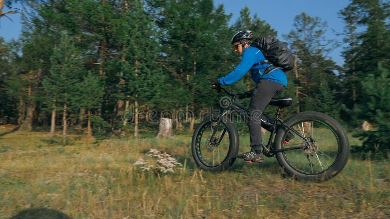 肥胖自行车在森林里也叫了在夏天骑马的fatbike或肥胖轮胎自行车 库存照片