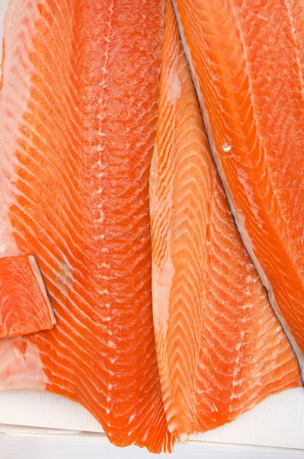 肥腻内圆角新鲜市场三文鱼 免版税库存图片