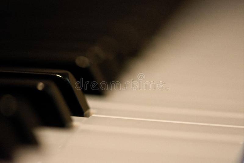 肩并肩钢琴按钮 库存照片