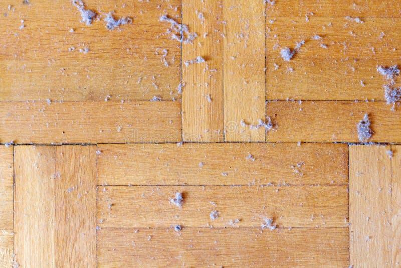 肮脏的多灰尘的木地板 库存照片
