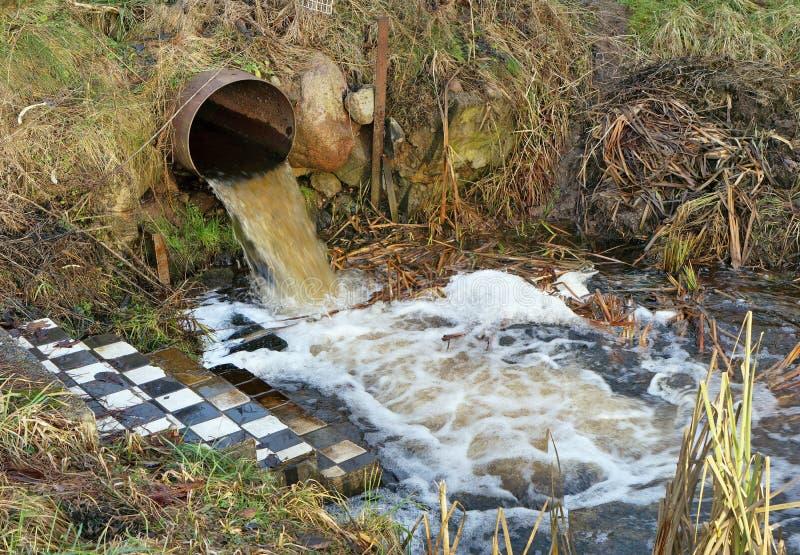 肮脏的废水合并入一条干净的森林小河 库存照片