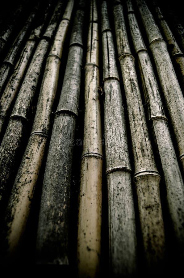 肮脏的竹子背景  免版税图库摄影