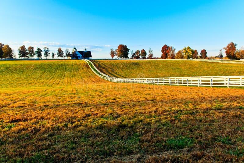肯塔基良种马农场 免版税库存图片