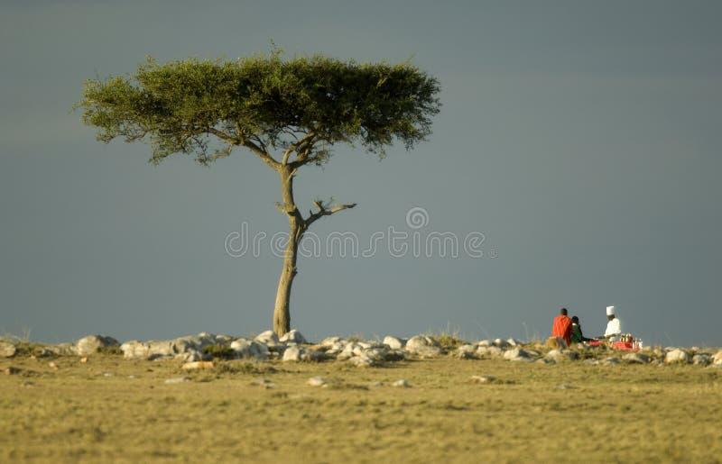 肯尼亚mara马塞语 图库摄影