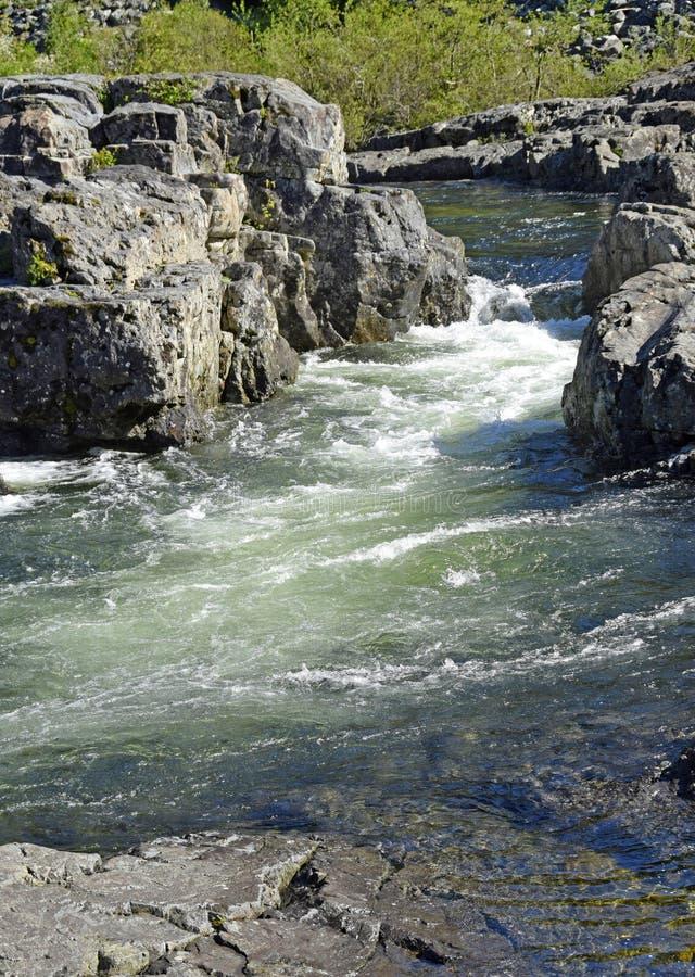肯尼迪河急流,温哥华岛 库存照片