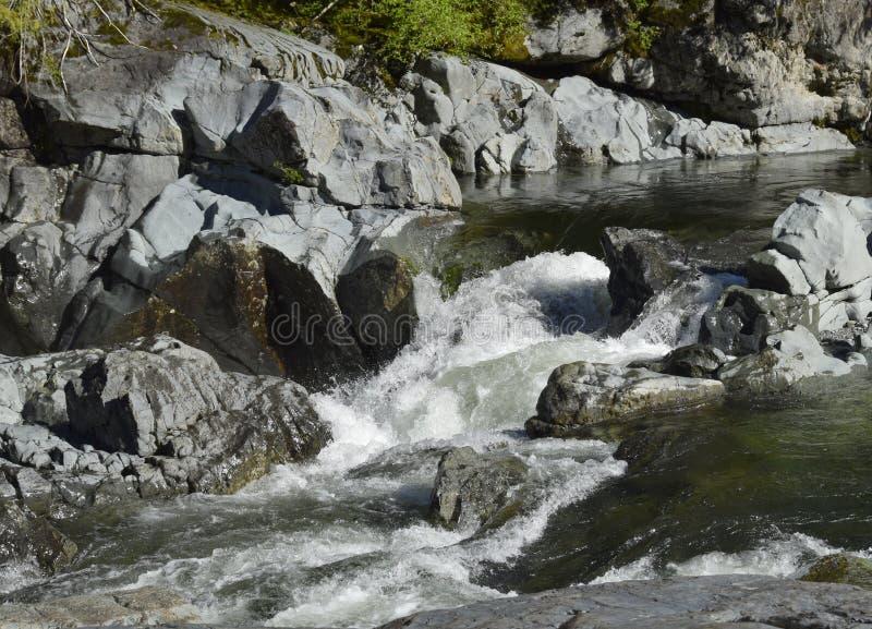 肯尼迪河急流,温哥华岛 免版税库存照片