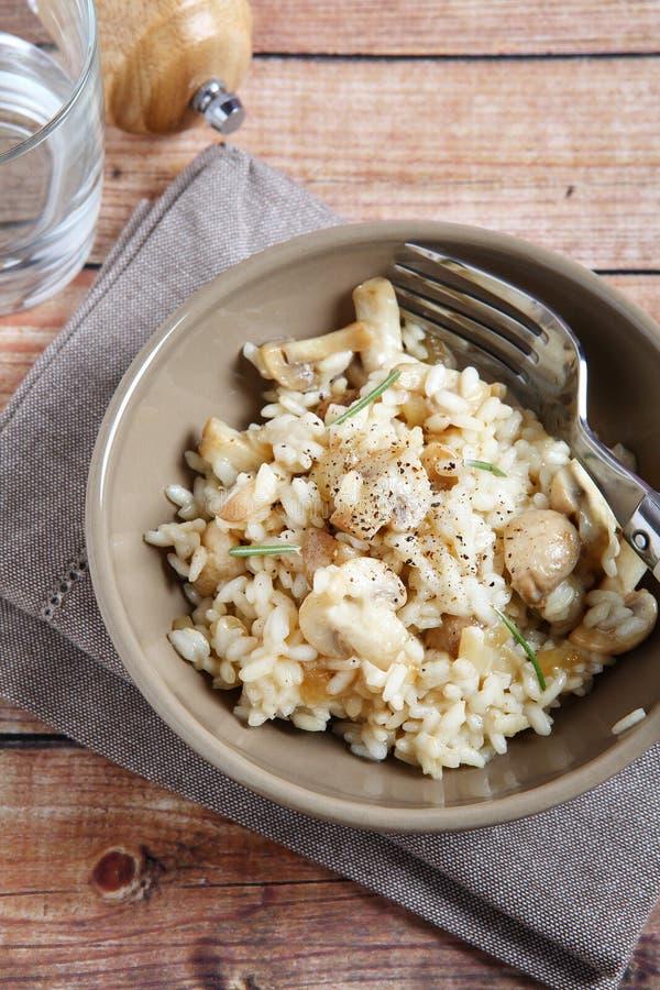 养育的米用蘑菇 库存图片