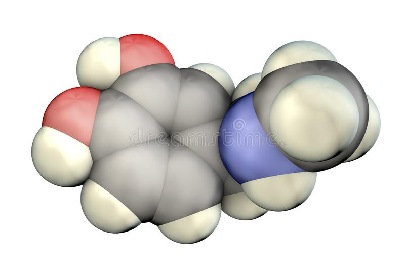 肾上腺素分子,肾上腺生产的激素 向量例证