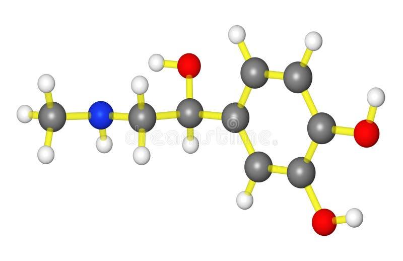 肾上腺素模型分子 皇族释放例证
