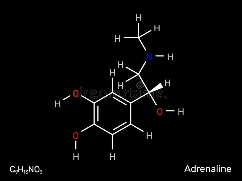 肾上腺素神经传送体分子式 也corel凹道例证向量 皇族释放例证