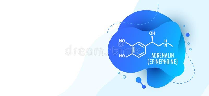 肾上腺素肾上腺素,肾上腺素分子 向量例证